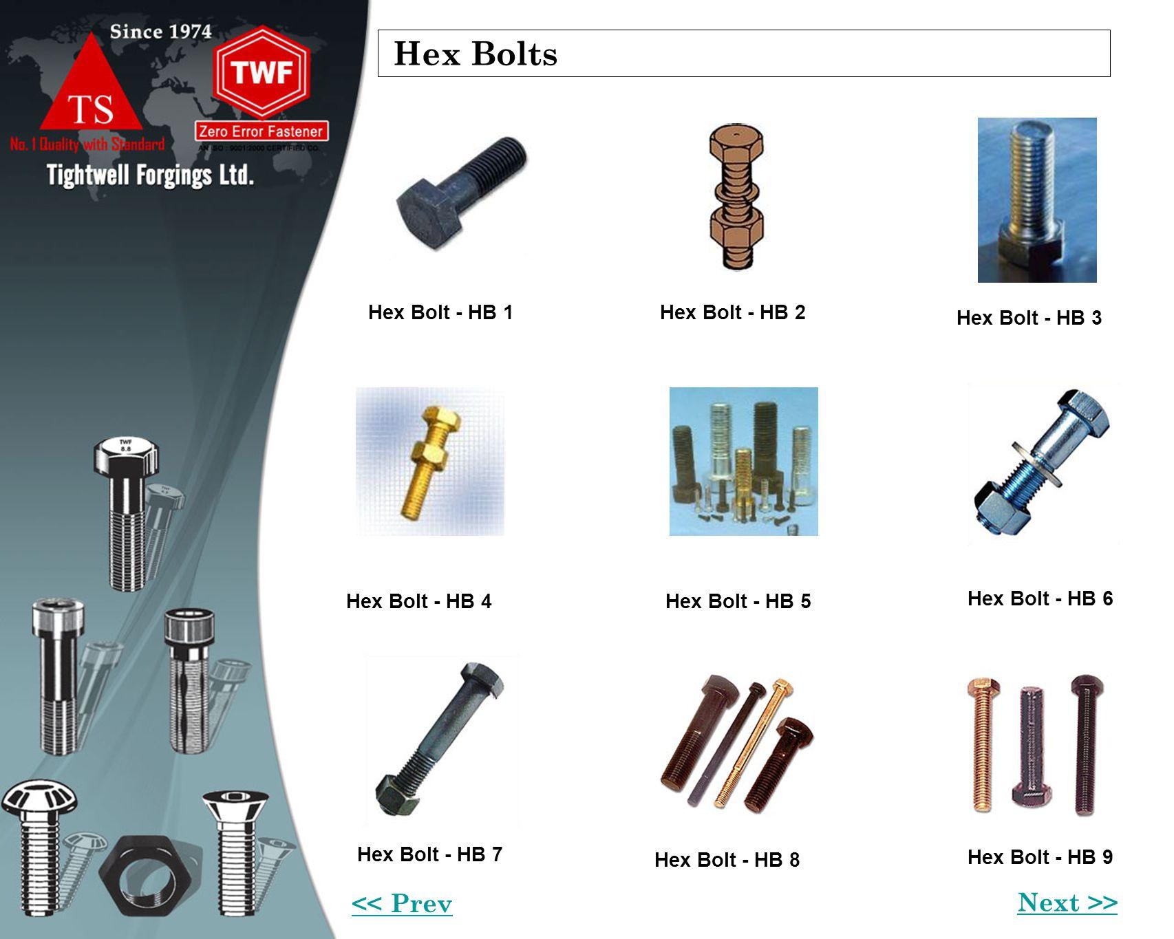 Hex Bolts Hex Bolt - HB 1Hex Bolt - HB 2 Hex Bolt - HB 3 Hex Bolt - HB 6 Hex Bolt - HB 9 Hex Bolt - HB 8 Hex Bolt - HB 7 Hex Bolt - HB 4Hex Bolt - HB 5 Next >> << Prev