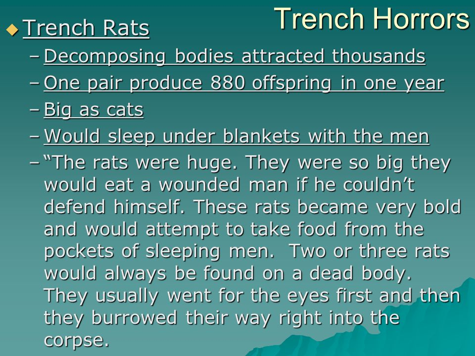 Trench Horrors Trench Rats Trench Rats –Decomposing bodies attracted thousands –One pair produce 880 offspring in one year –Big as cats –Would sleep under blankets with the men –The rats were huge.
