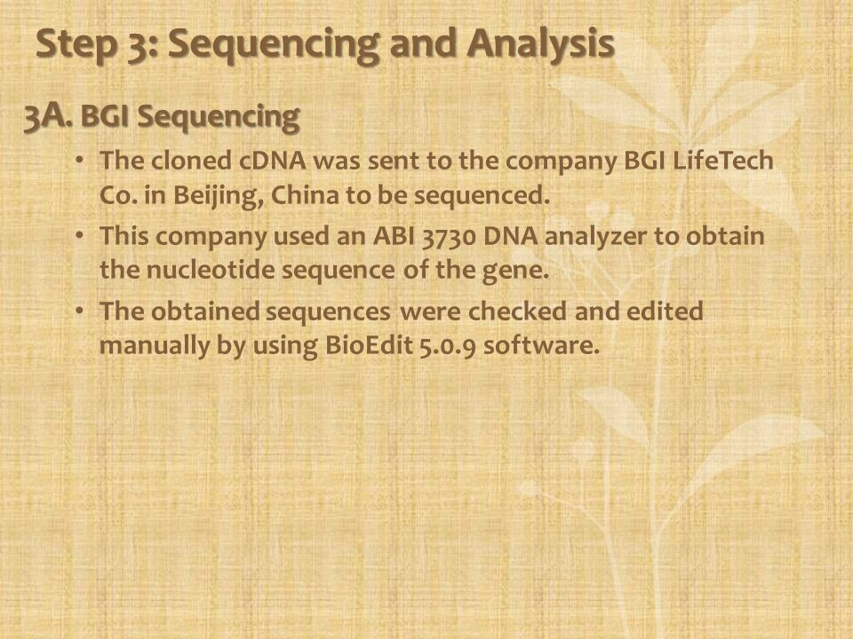 Step 3: Sequencing and Analysis 3A. BGI Sequencing The cloned cDNA was sent to the company BGI LifeTech Co. in Beijing, China to be sequenced. This co