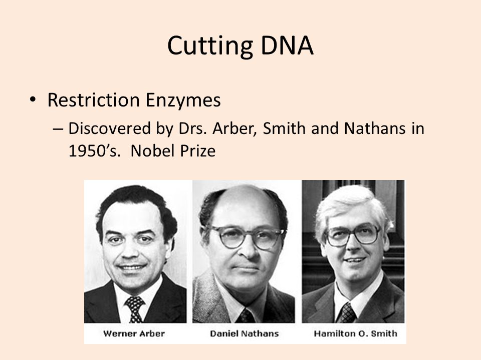 Cutting DNA Restriction Enzymes – Discovered by Drs. Arber, Smith and Nathans in 1950s. Nobel Prize