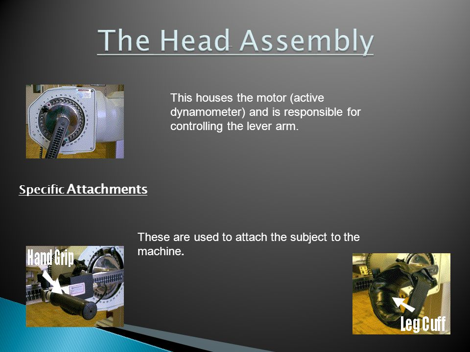 This houses the motor (active dynamometer) and is responsible for controlling the lever arm.