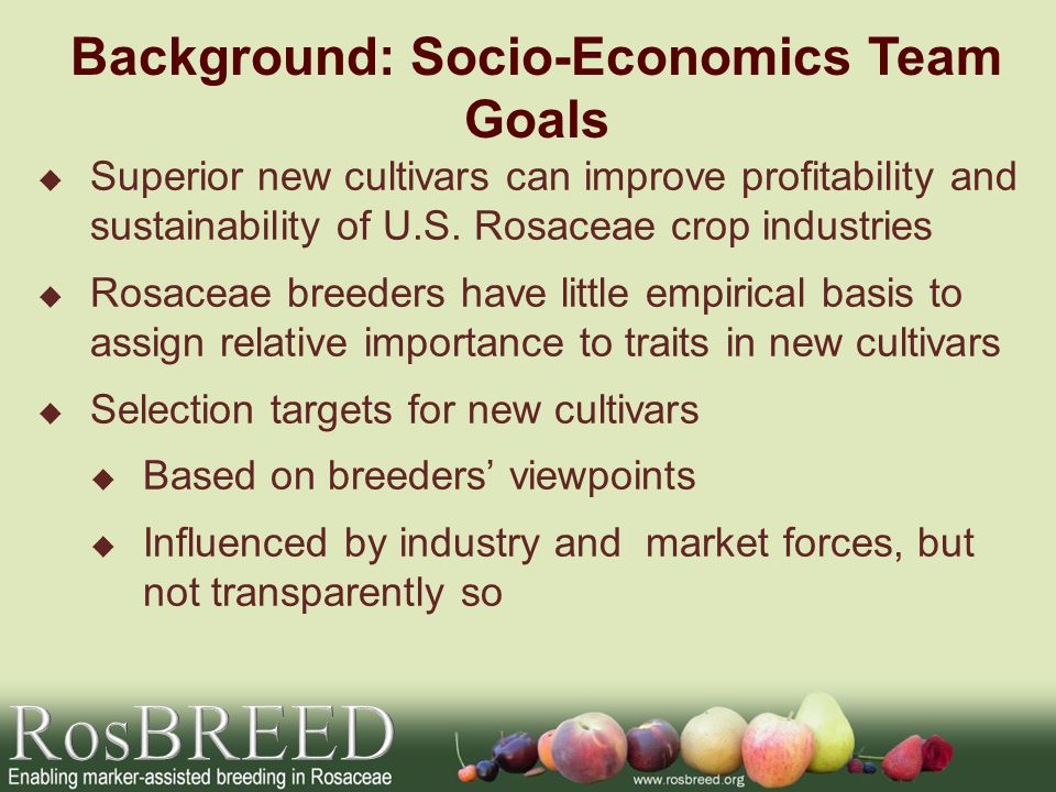 Socio-Economics Team Goal Determine what each supply chain sector values: breeders producers/processors market intermediaries consumers Use this information to develop new cultivars that will be more quickly accepted and have enhanced commercial impact Help accelerate and increase efficiency of cultivar development and adoption by identifying valuable breeding trait targets