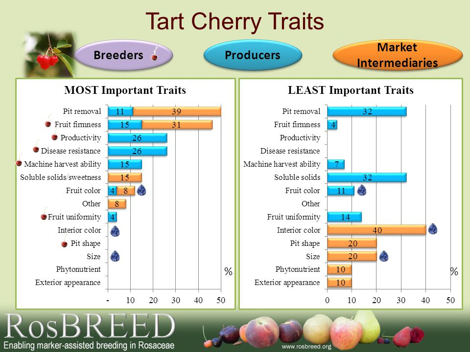 Tart Cherry Traits Producers Breeders Market Intermediaries Market Intermediaries %