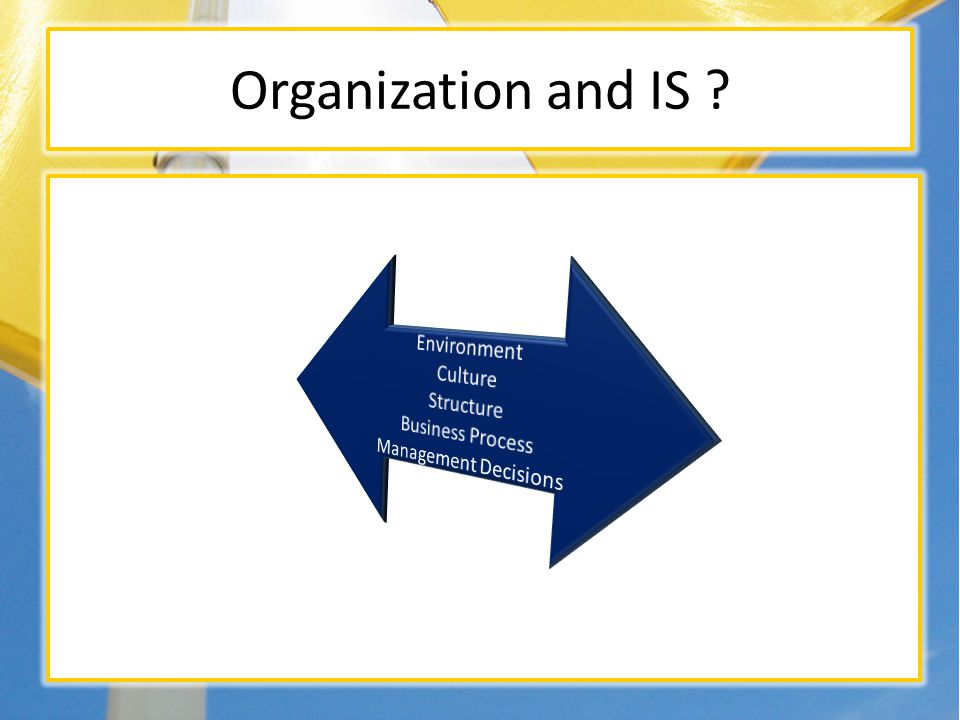Organization and IS ? Organization Information System