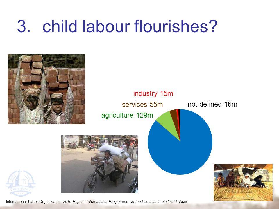 3.child labour flourishes? agriculture 129m services 55m industry 15m not defined 16m International Labor Organization 2010 Report: International Prog