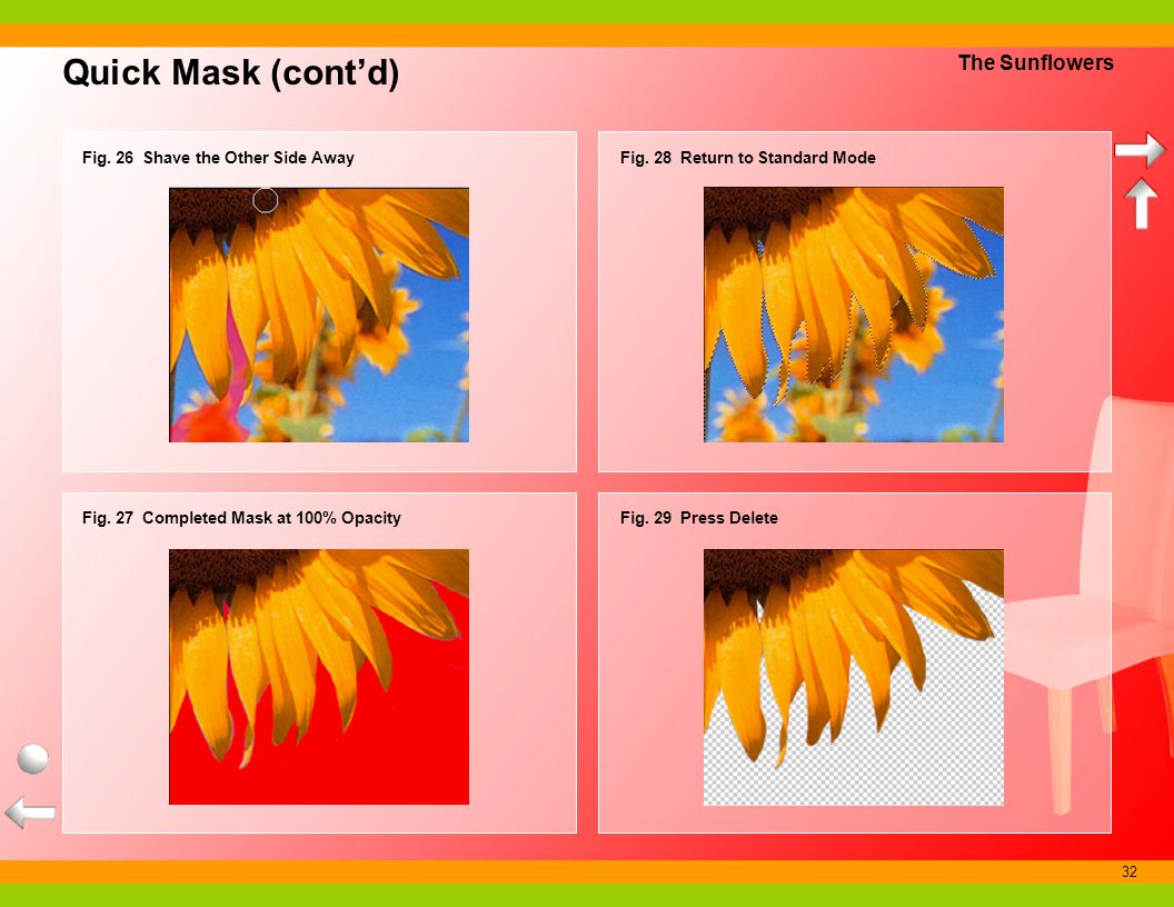 32 Quick Mask (contd) The Sunflowers Fig. 28 Return to Standard Mode Fig. 29 Press Delete Fig. 26 Shave the Other Side Away Fig. 27 Completed Mask at