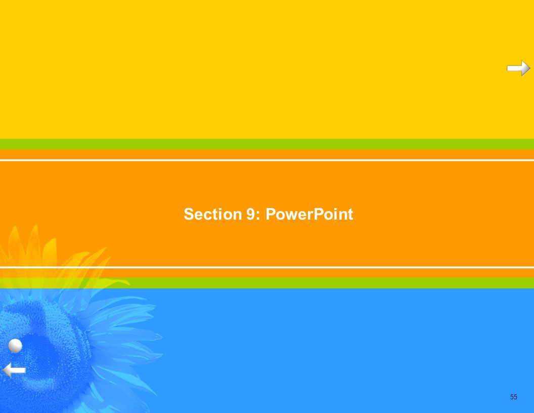 55 Section 9: PowerPoint