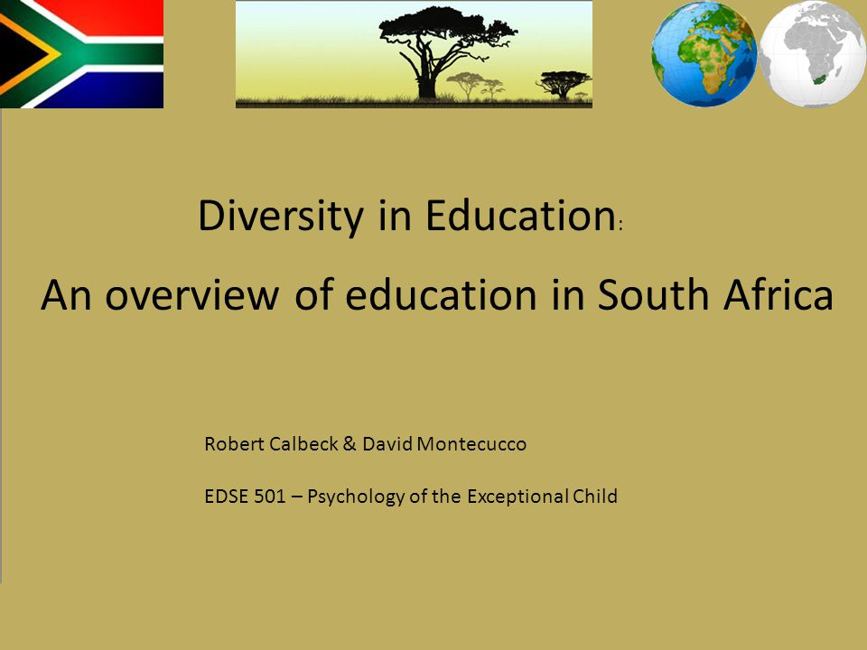 Literacy: Defined as 15 year olds who can read & write 86.4% as of 2008*** 10% of students fail to pass 9 th grade 40% of students fail to pass 12 th grade Government support: 20% of budget spent on education 15% of budget spent on health care southafrica.info, 2008