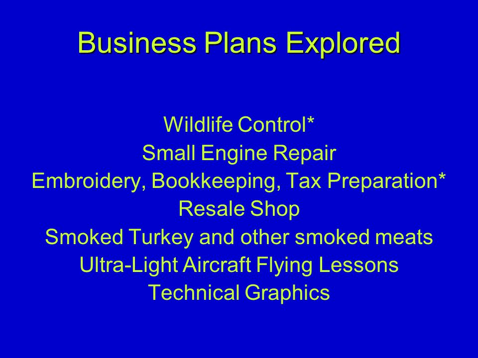 Business Plans Explored Wildlife Control* Small Engine Repair Embroidery, Bookkeeping, Tax Preparation* Resale Shop Smoked Turkey and other smoked meats Ultra-Light Aircraft Flying Lessons Technical Graphics