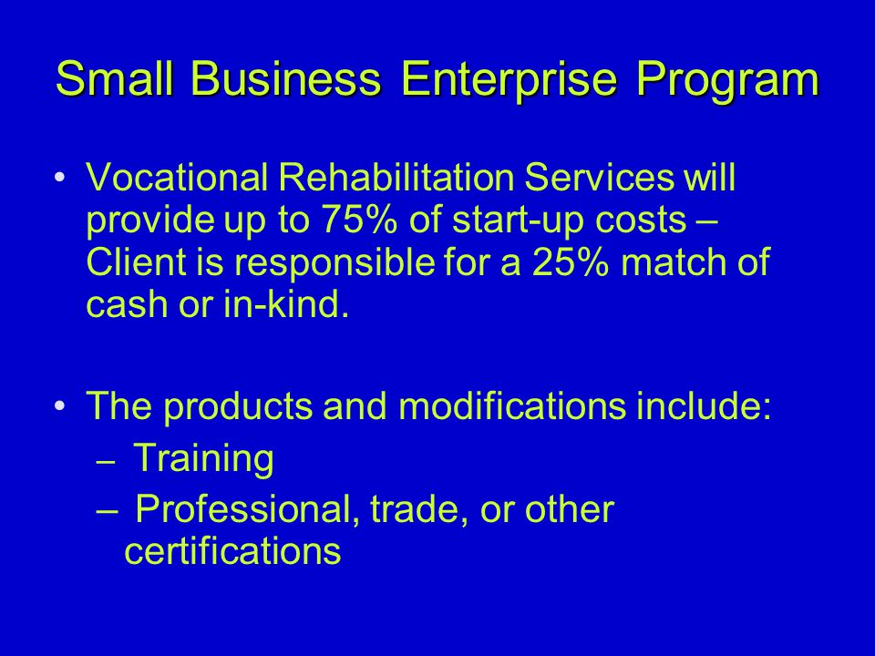 What I have Learned in the Last 2+ Years From Vocational Rehabilitation Services (cont.) Some supervisors have told their counselors not to do any small business enterprise plans In some offices, the proposal must be presented in the Required VR Business Plan Outline, others it does not.