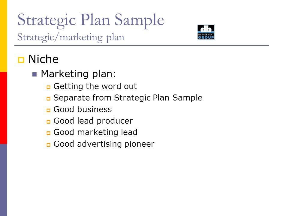 Strategic Plan Sample Strategic/marketing plan Niche Marketing plan: Getting the word out Separate from Strategic Plan Sample Good business Good lead