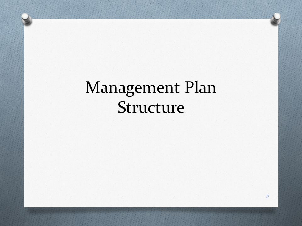 Management Plan Structure 8
