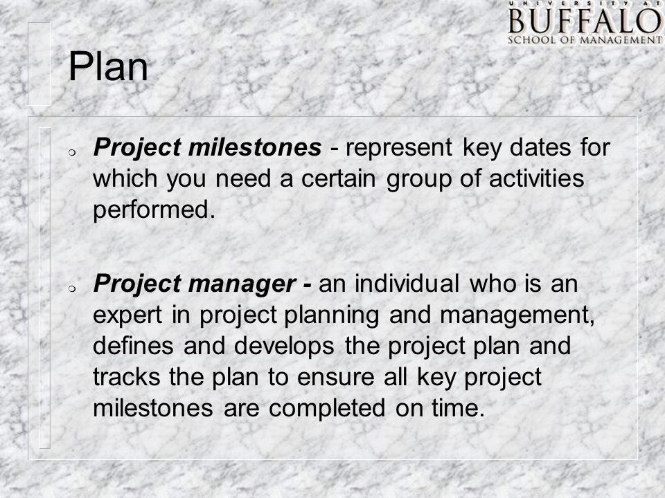Plan m Project milestones - represent key dates for which you need a certain group of activities performed. m Project manager - an individual who is a
