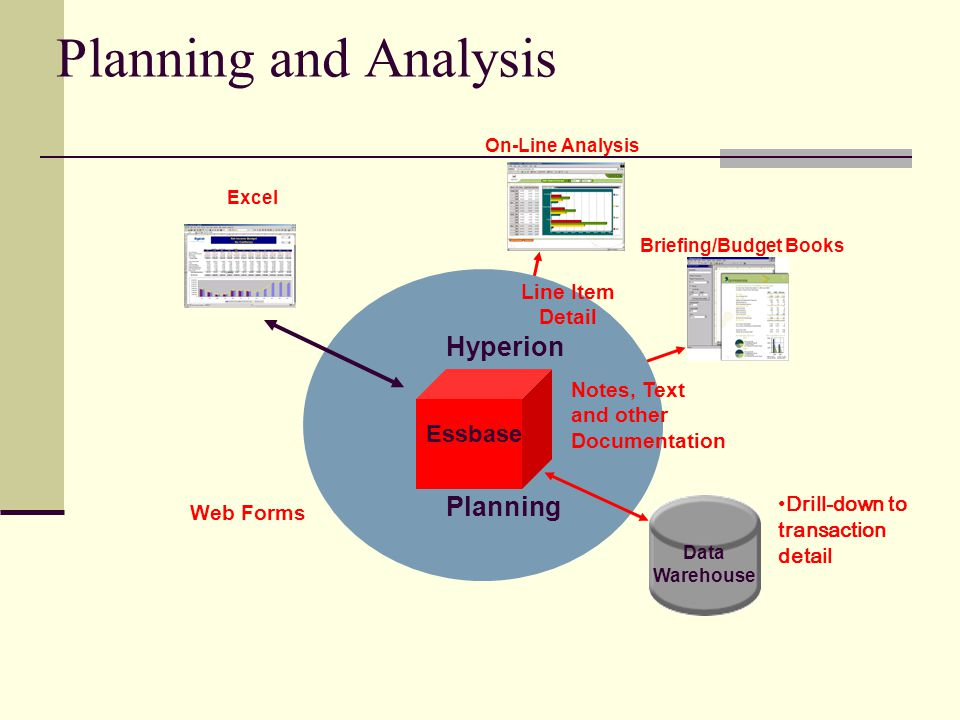 Planning and Analysis On-Line Analysis Briefing/Budget Books Notes, Text and other Documentation Essbase Hyperion Planning Web Forms Excel Data Warehouse Line Item Detail Drill-down to transaction detail