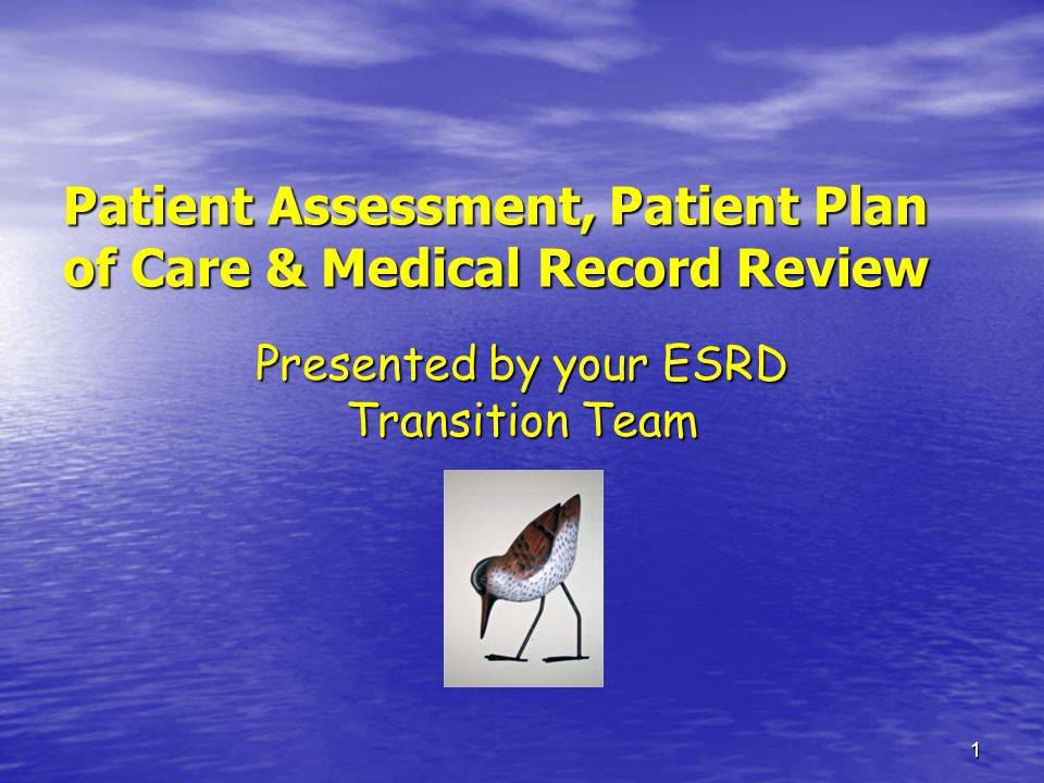 1 Patient Assessment, Patient Plan of Care & Medical Record Review Presented by your ESRD Transition Team