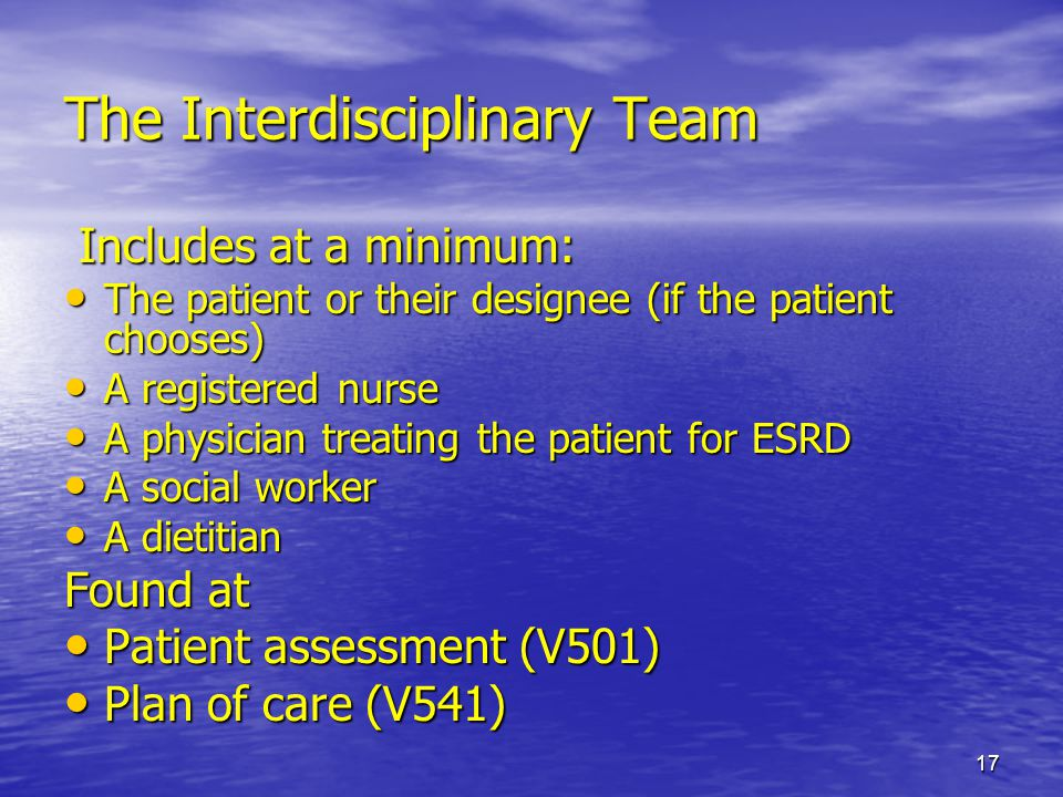 17 The Interdisciplinary Team Includes at a minimum: Includes at a minimum: The patient or their designee (if the patient chooses) The patient or thei