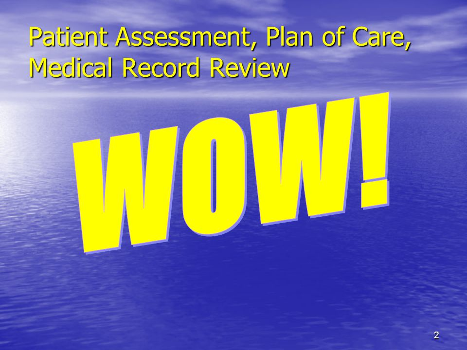 2 Patient Assessment, Plan of Care, Medical Record Review