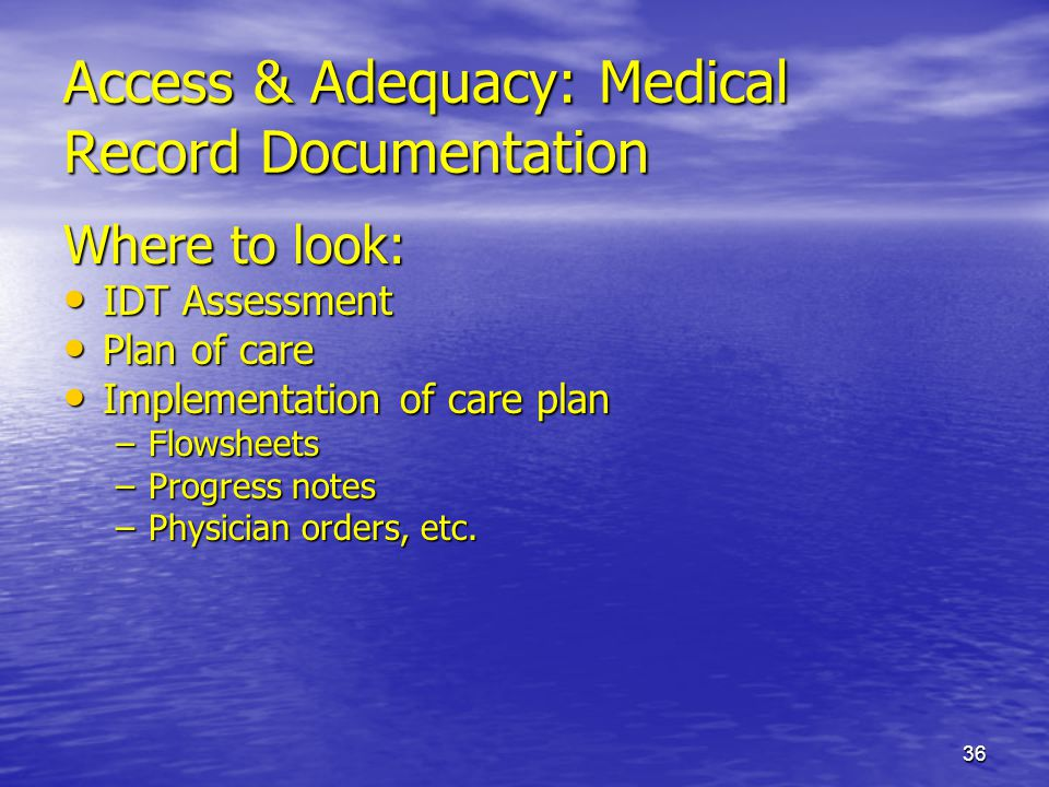 36 Access & Adequacy: Medical Record Documentation Where to look: IDT Assessment IDT Assessment Plan of care Plan of care Implementation of care plan