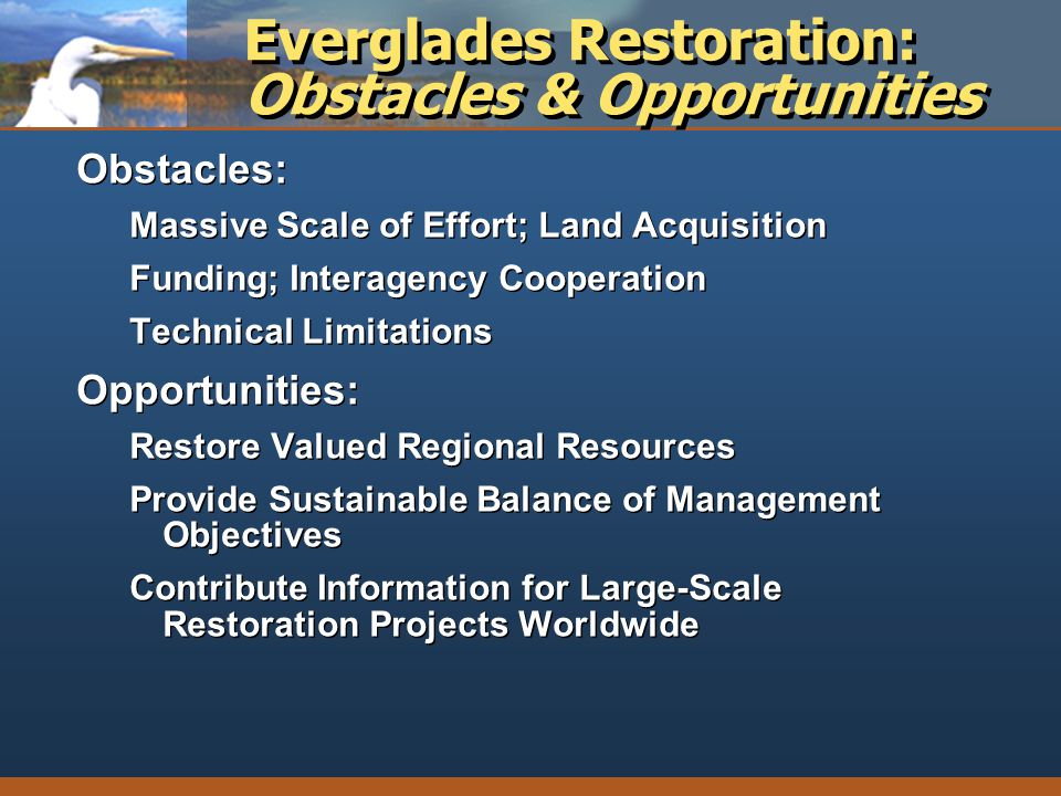 Everglades Restoration: Obstacles & Opportunities Obstacles: Massive Scale of Effort; Land Acquisition Funding; Interagency Cooperation Technical Limi