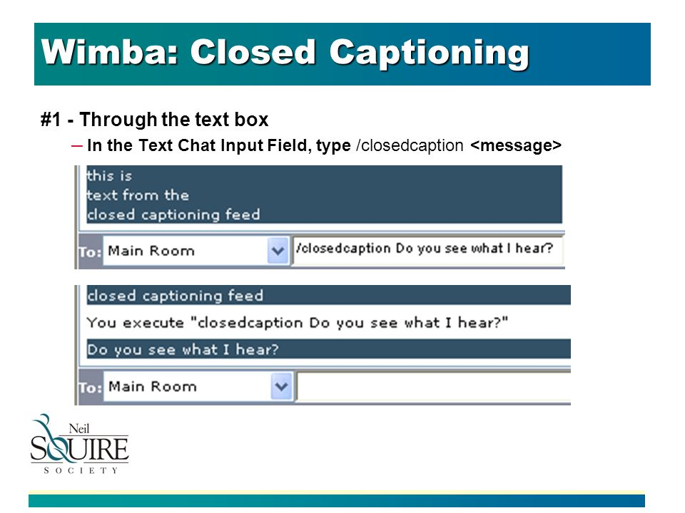 Wimba: Closed Captioning #1 - Through the text box – In the Text Chat Input Field, type /closedcaption