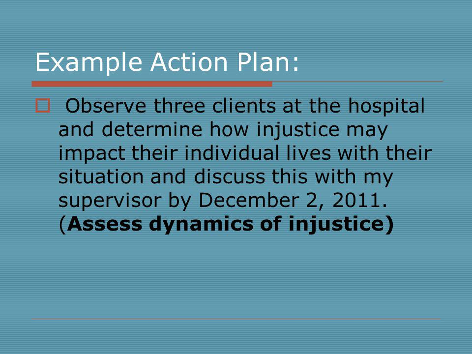 Example Action Plan: Observe three clients at the hospital and determine how injustice may impact their individual lives with their situation and discuss this with my supervisor by December 2, 2011.