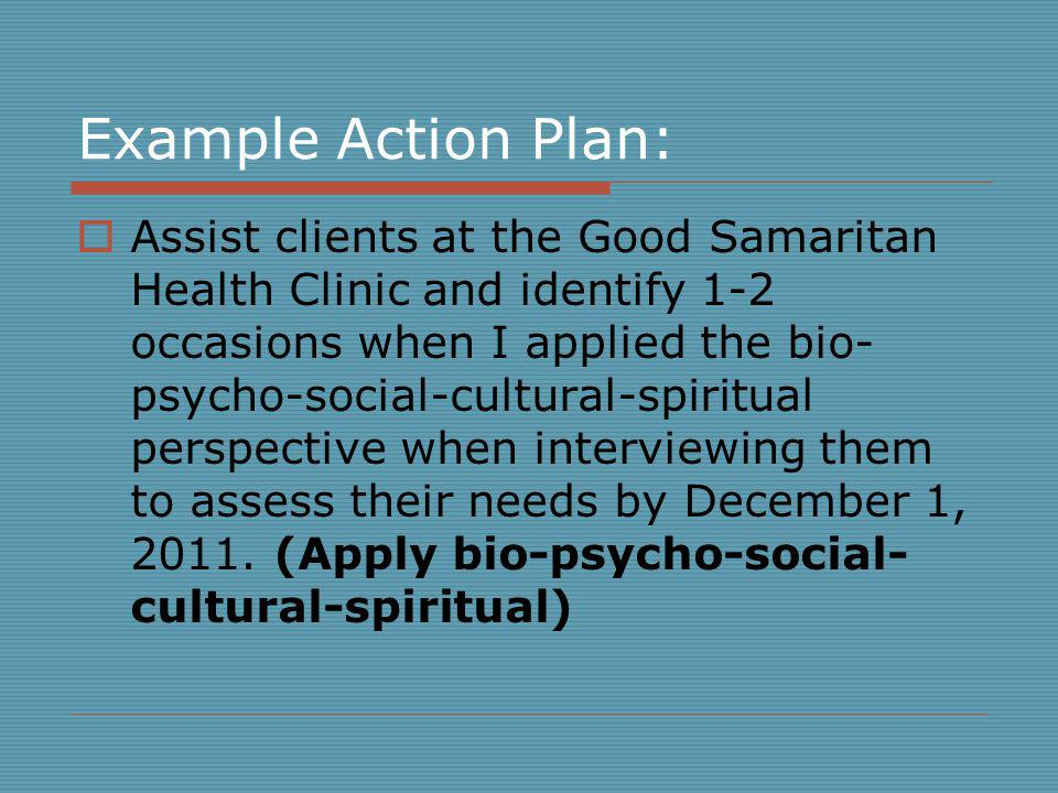 Example Action Plan: Assist clients at the Good Samaritan Health Clinic and identify 1-2 occasions when I applied the bio- psycho-social-cultural-spiritual perspective when interviewing them to assess their needs by December 1, 2011.
