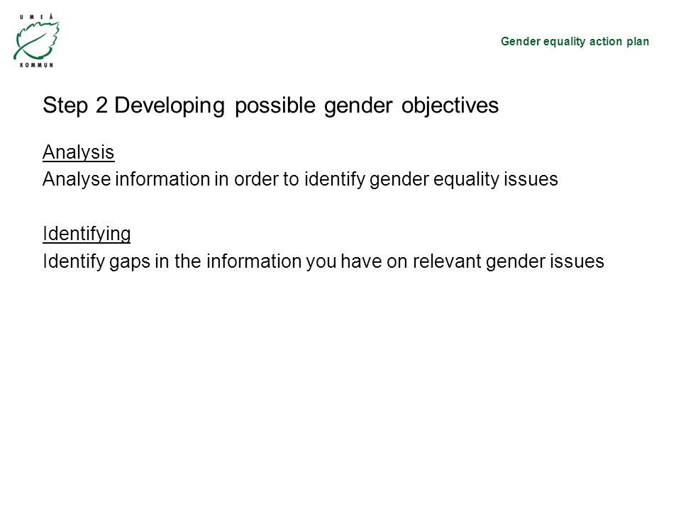 Gender equality action plan Step 2 Developing possible gender objectives Analysis Analyse information in order to identify gender equality issues Identifying Identify gaps in the information you have on relevant gender issues