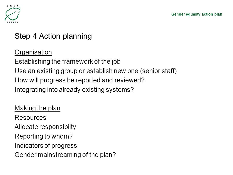 Gender equality action plan Step 4 Action planning Organisation Establishing the framework of the job Use an existing group or establish new one (senior staff) How will progress be reported and reviewed.