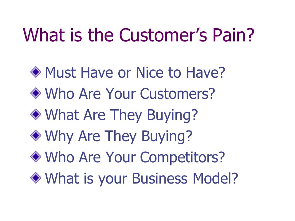 What is the Customers Pain? Must Have or Nice to Have? Who Are Your Customers? What Are They Buying? Why Are They Buying? Who Are Your Competitors? Wh