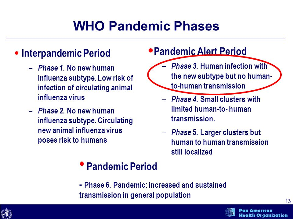 text 13 Pan American Health Organization WHO Pandemic Phases Interpandemic Period – Phase 1. No new human influenza subtype. Low risk of infection of