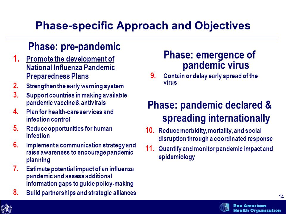 text 14 Pan American Health Organization Phase-specific Approach and Objectives Phase: pre-pandemic 1.