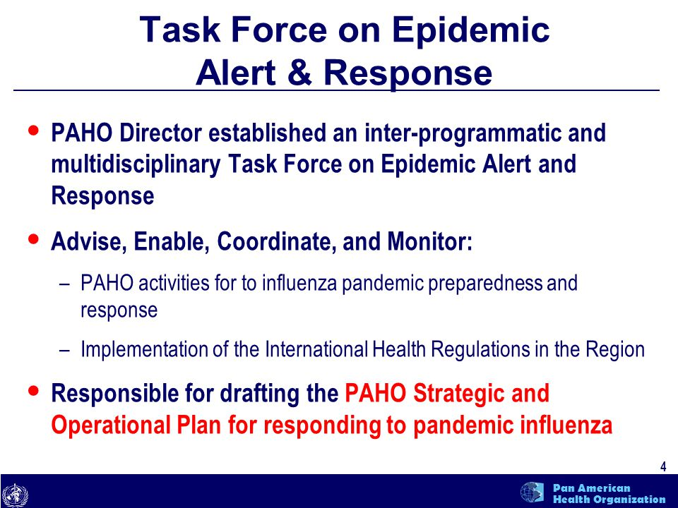text 5 Pan American Health Organization Strategic & Operational Plan for Responding to Pandemic Influenza Objectives: To direct PAHO Technical Cooperation activities to prepare the Region for an influenza pandemic To assist countries in their Development of National influenza pandemic preparedness plans To assist countries in the implementation of supporting actions which are needed for the effective response to a pandemic
