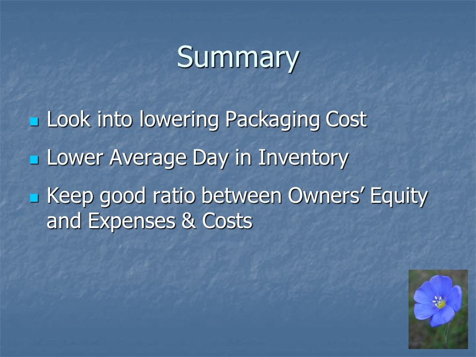 Summary Look into lowering Packaging Cost Look into lowering Packaging Cost Lower Average Day in Inventory Lower Average Day in Inventory Keep good ratio between Owners Equity and Expenses & Costs Keep good ratio between Owners Equity and Expenses & Costs