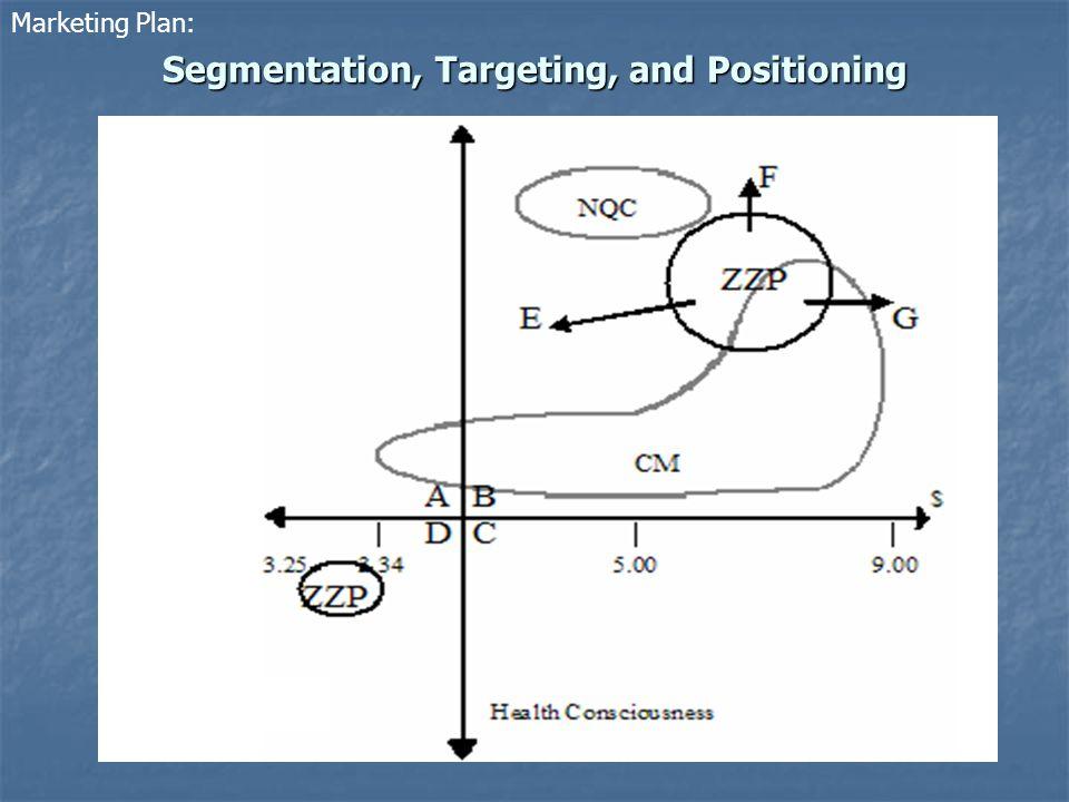 Segmentation, Targeting, and Positioning Marketing Plan: