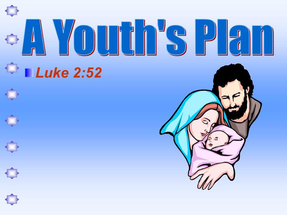 Money (4:6) Companionship (4:9) Fun (7:2) Punishment (8:11) Ecclesiastes 12:1