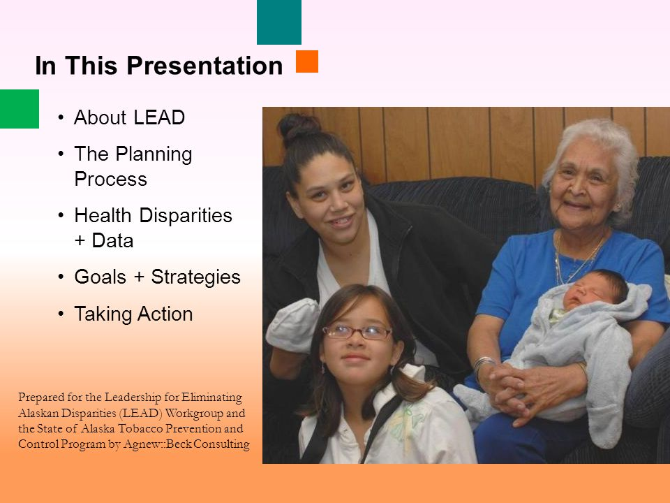 About LEAD The Planning Process Health Disparities + Data Goals + Strategies Taking Action In This Presentation Prepared for the Leadership for Eliminating Alaskan Disparities (LEAD) Workgroup and the State of Alaska Tobacco Prevention and Control Program by Agnew::Beck Consulting