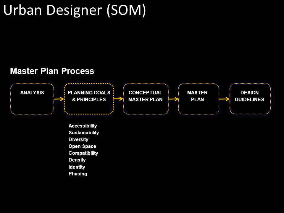 PLANNING GOALS & PRINCIPLES ANALYSISCONCEPTUAL MASTER PLAN MASTER PLAN DESIGN GUIDELINES Accessibility Sustainability Diversity Open Space Compatibility Density Identity Phasing Master Plan Process Urban Designer (SOM)