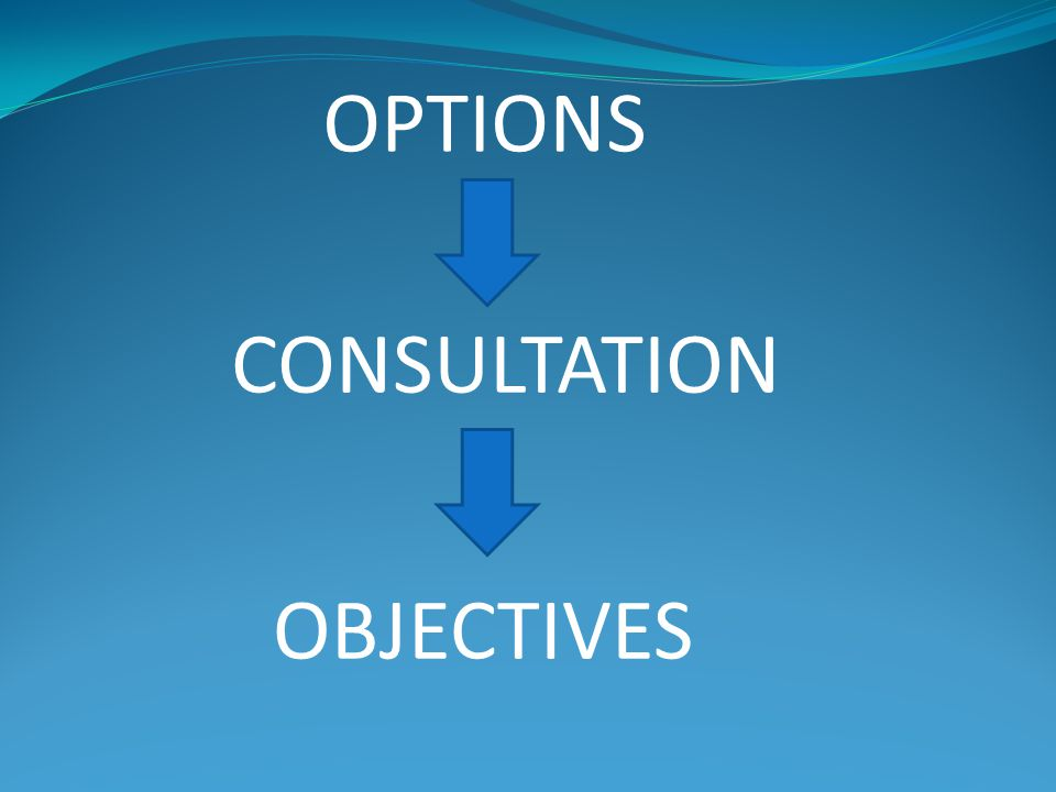 OPTIONS CONSULTATION OBJECTIVES