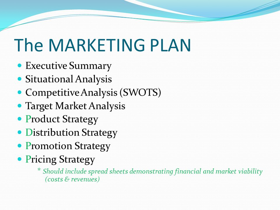 The MARKETING PLAN Executive Summary Situational Analysis Competitive Analysis (SWOTS) Target Market Analysis Product Strategy Distribution Strategy Promotion Strategy Pricing Strategy * Should include spread sheets demonstrating financial and market viability (costs & revenues)