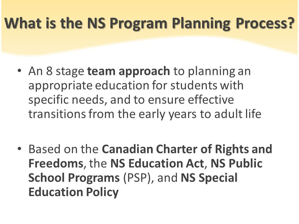 What is the NS Program Planning Process.