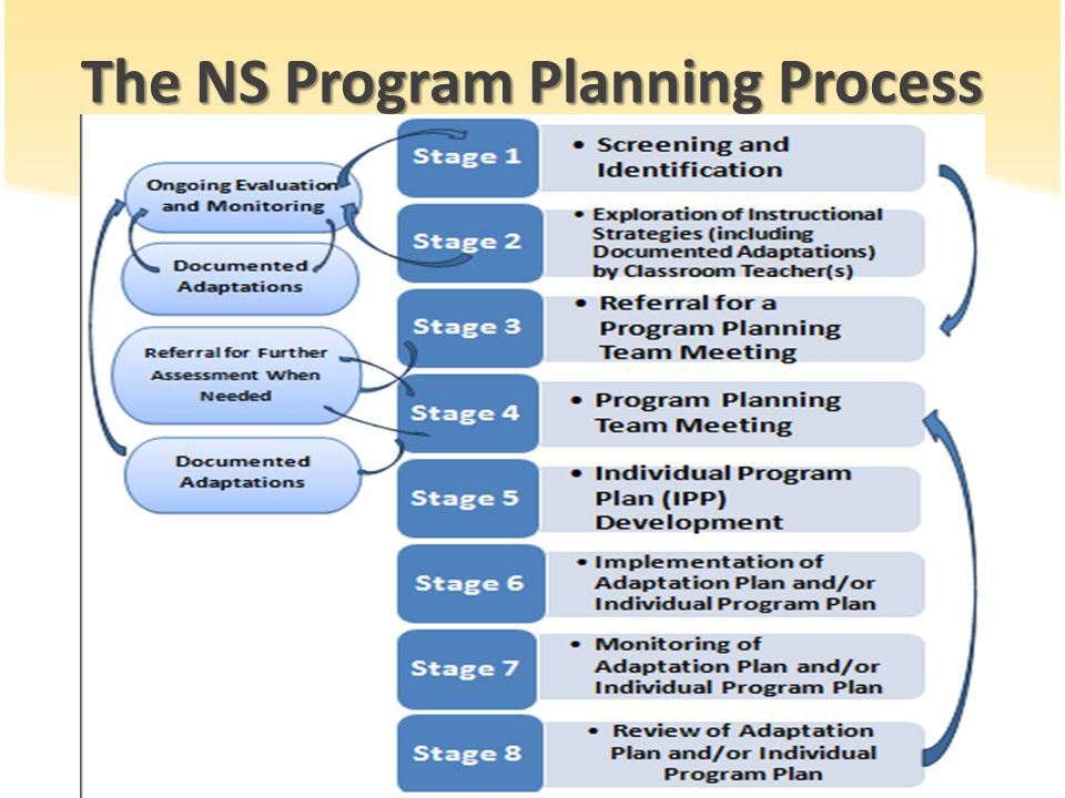The NS Program Planning Process