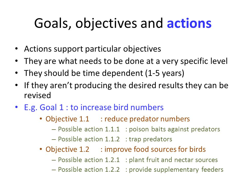 Goals, objectives and actions Actions support particular objectives They are what needs to be done at a very specific level They should be time dependent (1-5 years) If they arent producing the desired results they can be revised E.g.