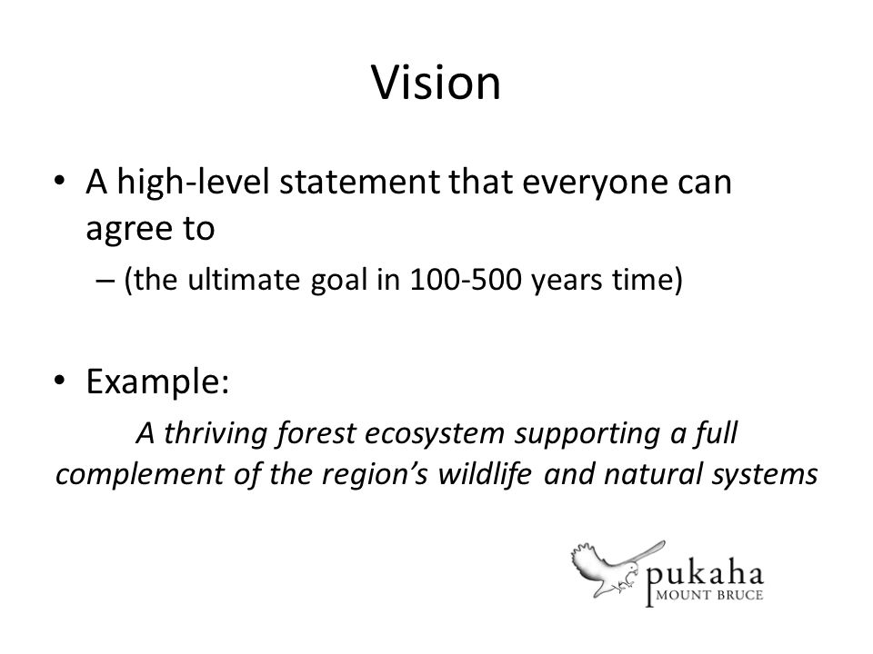 Vision A high-level statement that everyone can agree to – (the ultimate goal in 100-500 years time) Example: A thriving forest ecosystem supporting a full complement of the regions wildlife and natural systems