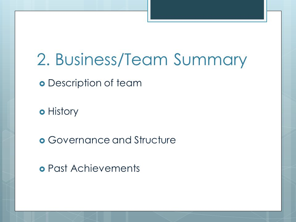 2. Business/Team Summary Description of team History Governance and Structure Past Achievements