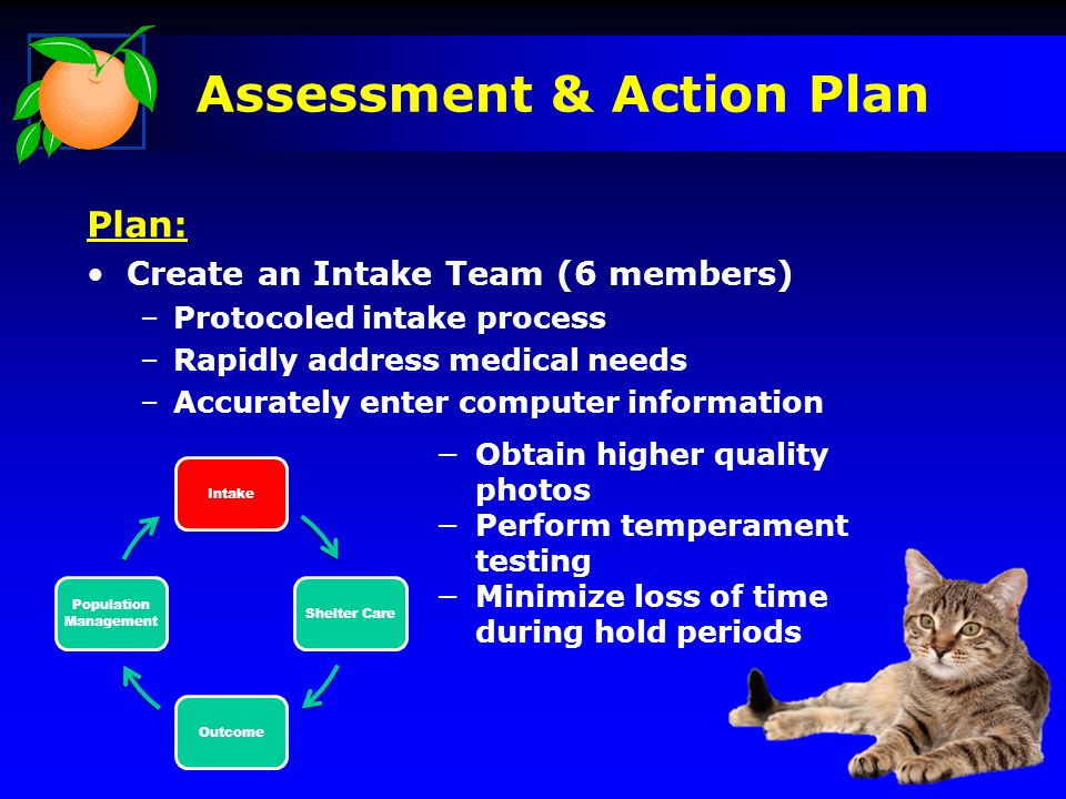 IntakeShelter CareOutcome Population Management Plan: Create an Intake Team (6 members) –Protocoled intake process –Rapidly address medical needs –Acc