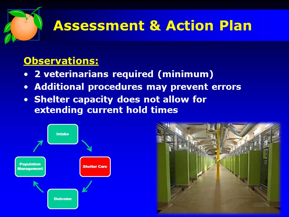 IntakeShelter CareOutcome Population Management Assessment & Action Plan Observations: 2 veterinarians required (minimum) Additional procedures may pr