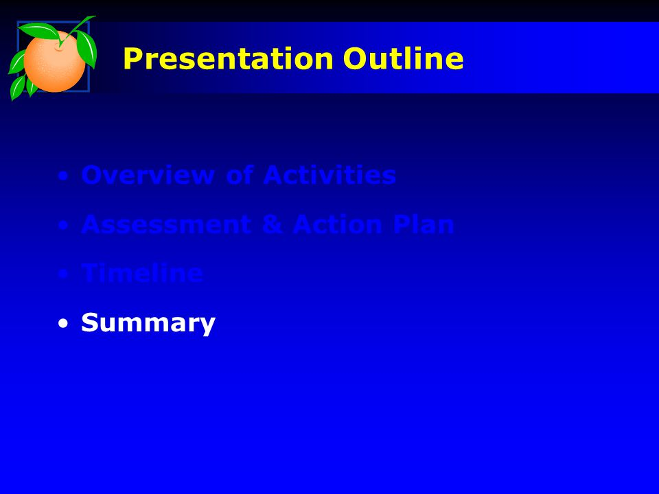 Overview of Activities Assessment & Action Plan Timeline Summary Presentation Outline