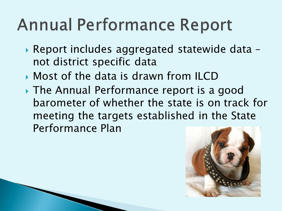 Report includes aggregated statewide data – not district specific data Most of the data is drawn from ILCD The Annual Performance report is a good barometer of whether the state is on track for meeting the targets established in the State Performance Plan