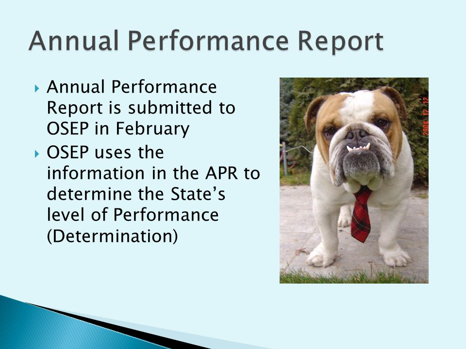 Annual Performance Report is submitted to OSEP in February OSEP uses the information in the APR to determine the States level of Performance (Determination)