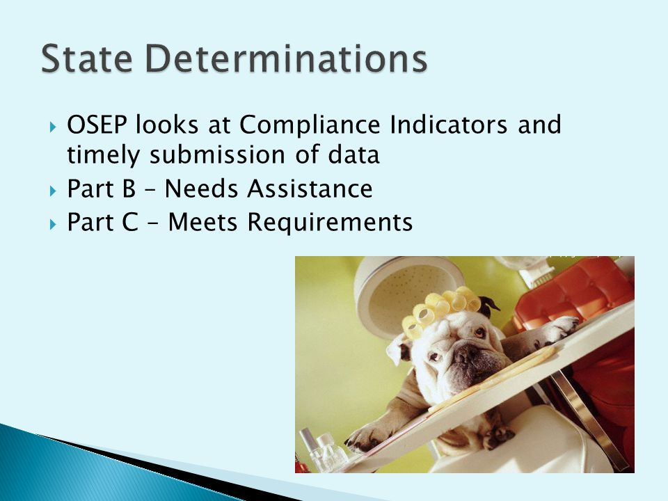 OSEP looks at Compliance Indicators and timely submission of data Part B – Needs Assistance Part C – Meets Requirements